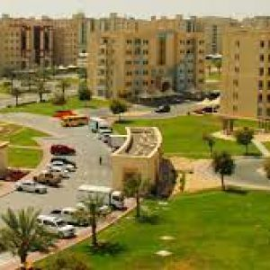 movers in Ruwais
